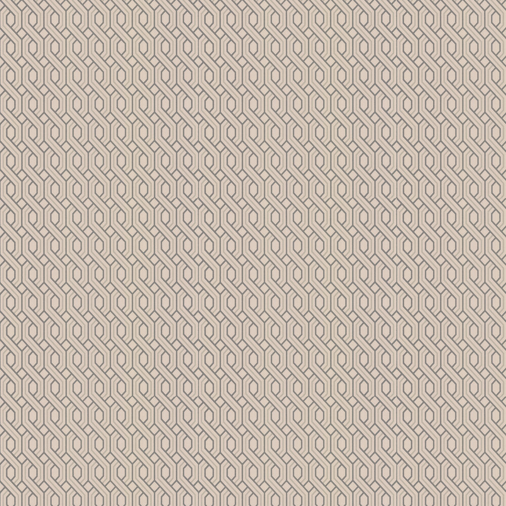 G P & J Baker Boxwood Trellis Blush Wallpaper - Product code: BW45082/5