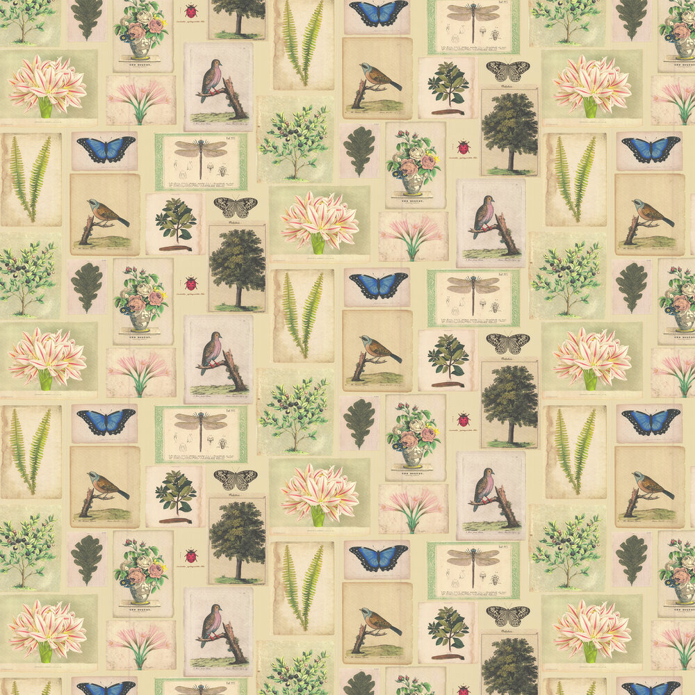Flora and Fauna Wallpaper - Parchment - by Designers Guild