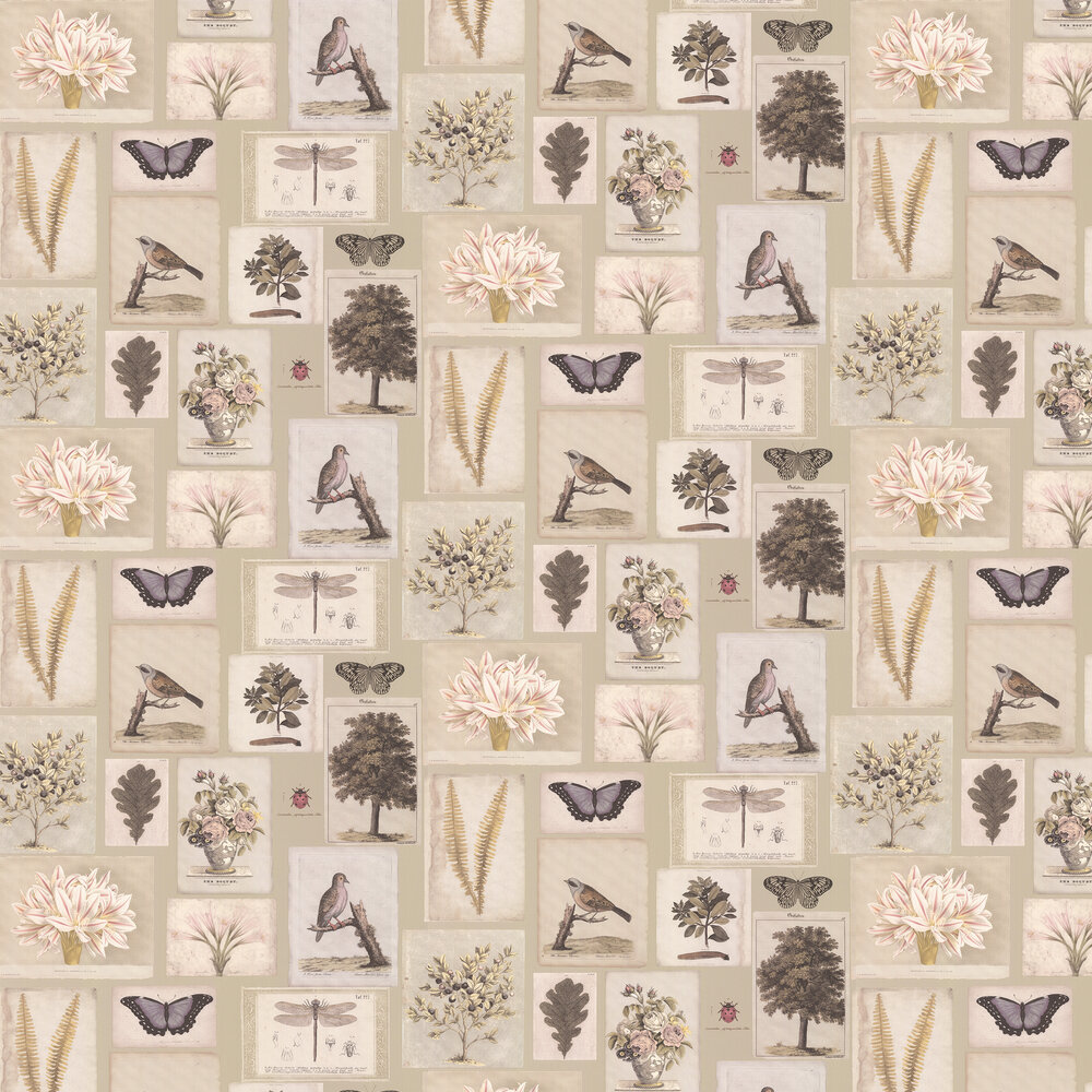 Flora and Fauna Wallpaper - Canvas - by Designers Guild
