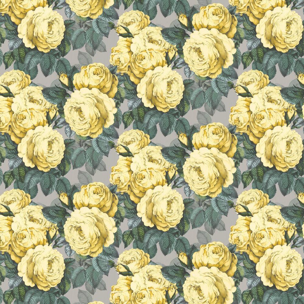 Designers Guild Wallpaper The Rose PJD6002/05