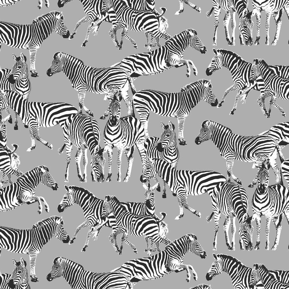 Zebras Wallpaper - Mid Grey - by Vilber
