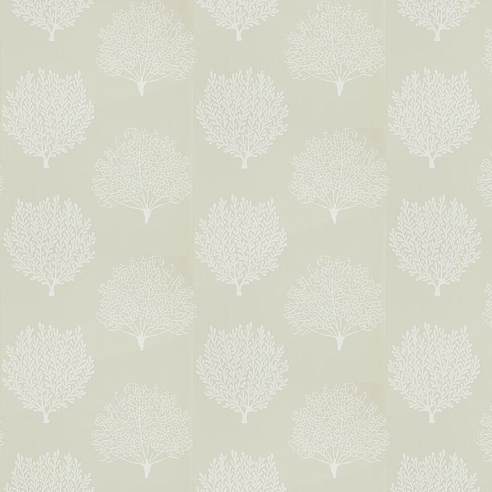 Coraline Wallpaper - Driftwood - by Sanderson