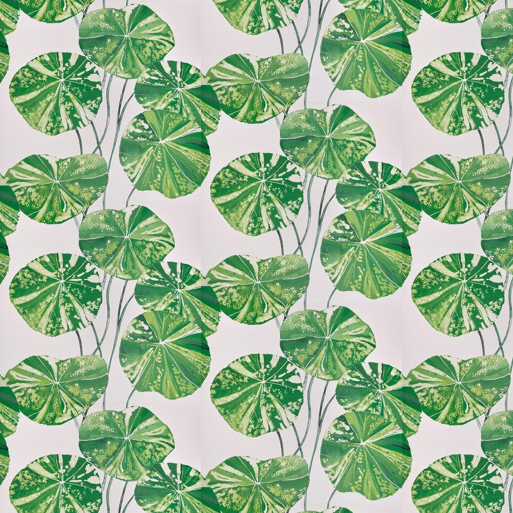 Brahmi Wallpaper - Leaf - by Designers Guild