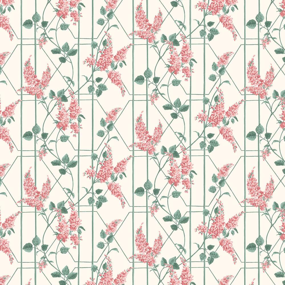 Wisteria Wallpaper - Coral / Sage - by Cole & Son