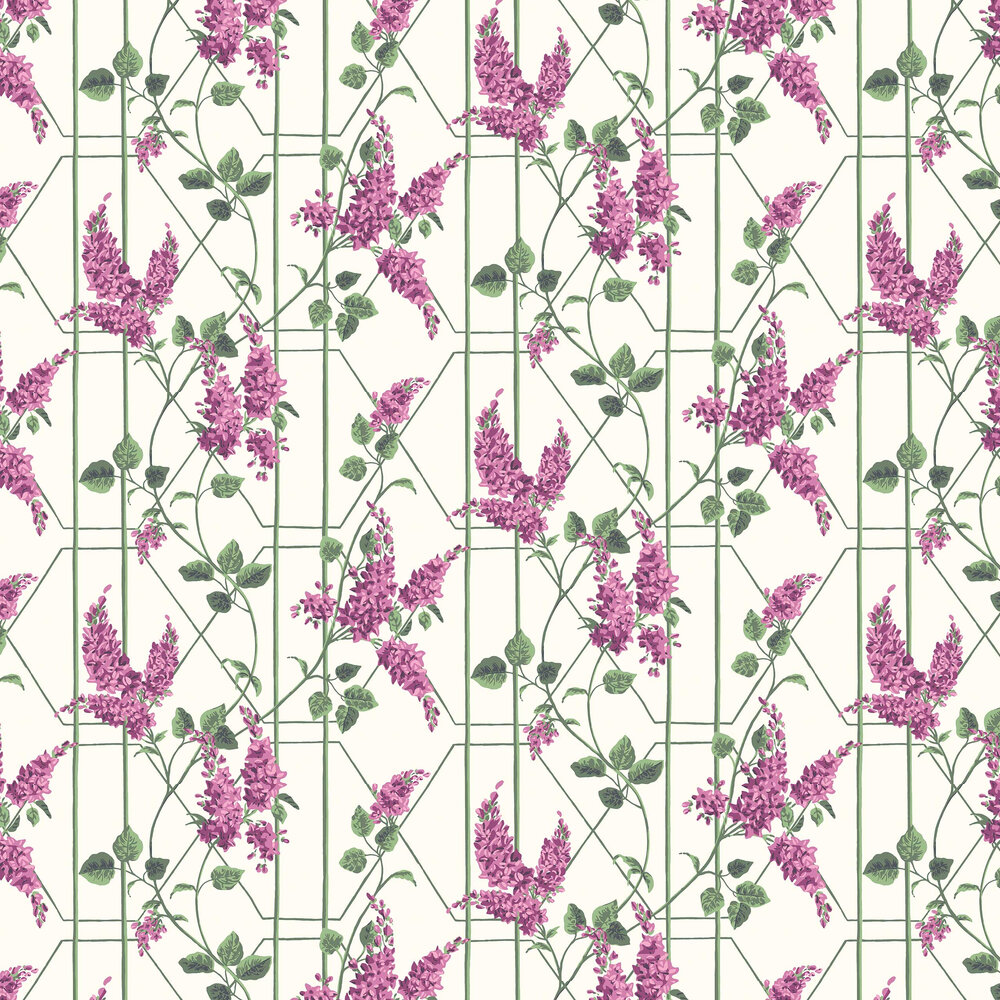 Wisteria Wallpaper - Magenta / Leaf Green - by Cole & Son