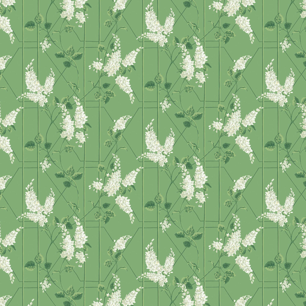 Wisteria Wallpaper - Sage / Leaf Green - by Cole & Son
