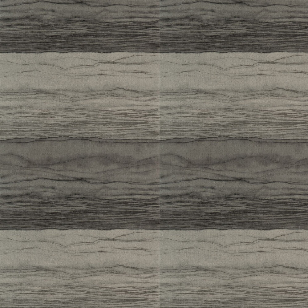 Metamorphic Wallpaper - Pyrite and Charcoal - by Anthology