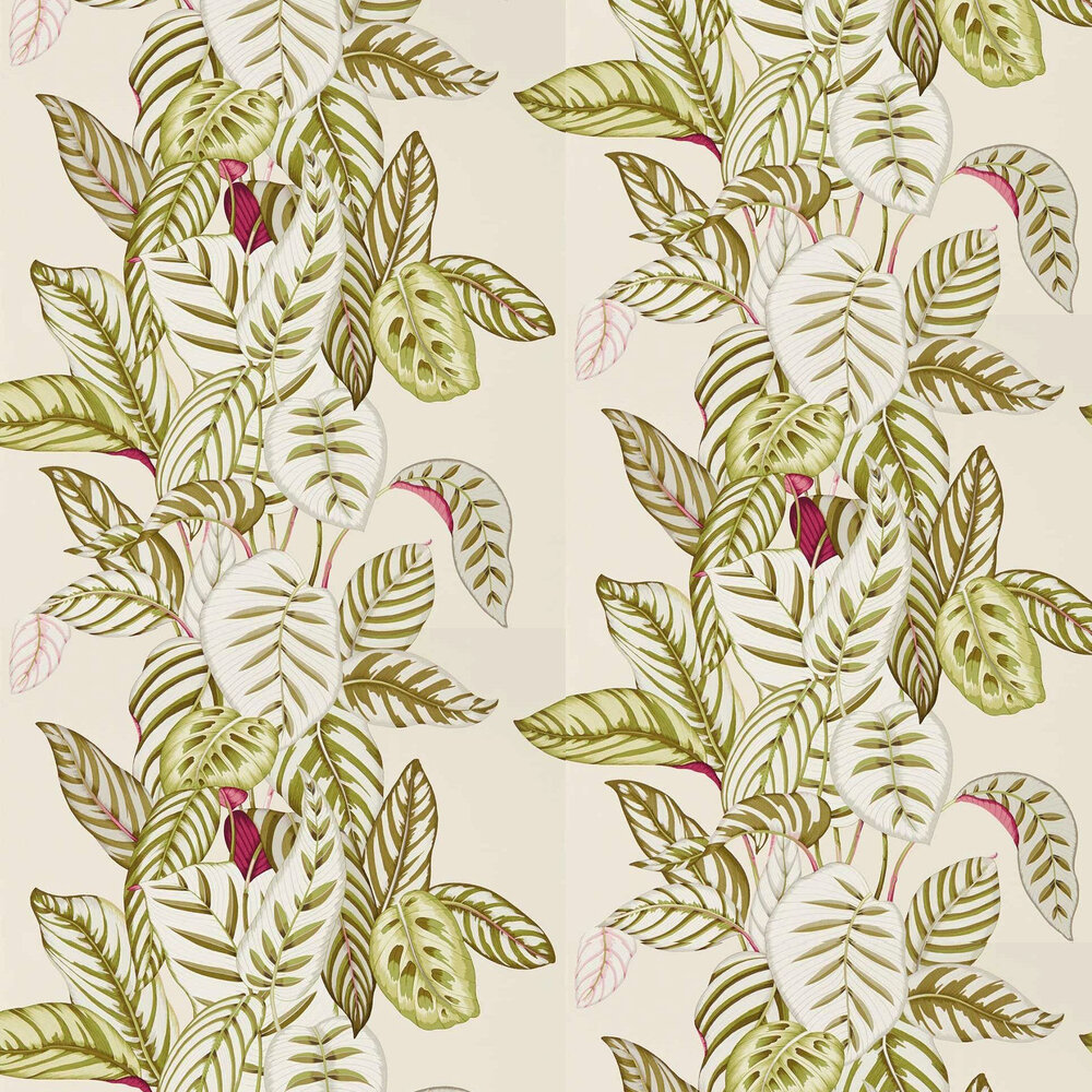 Sanderson Calathea Olive Wallpaper - Product code: 216631
