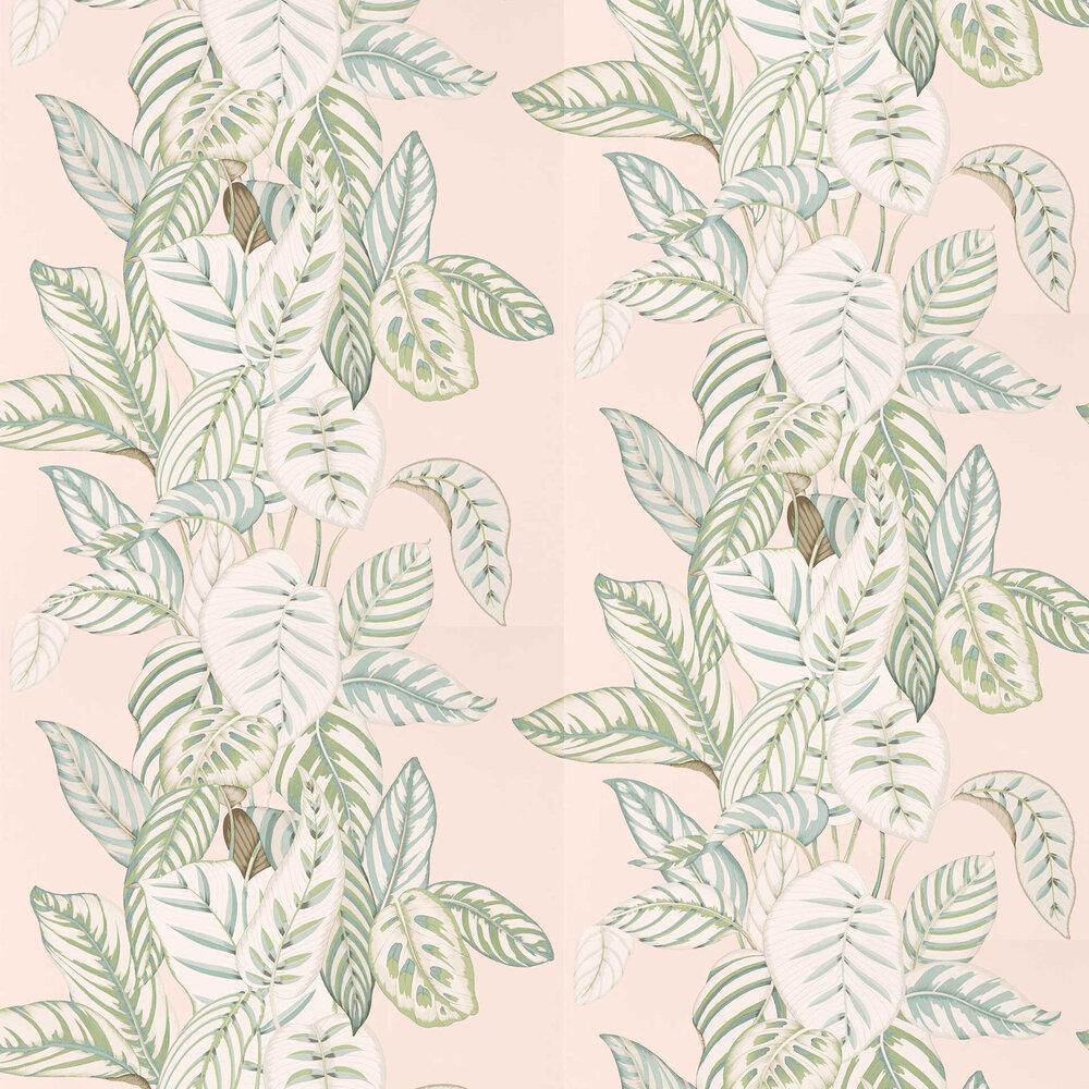 Sanderson Calathea Orchid / Eucalyptus Wallpaper - Product code: 216632