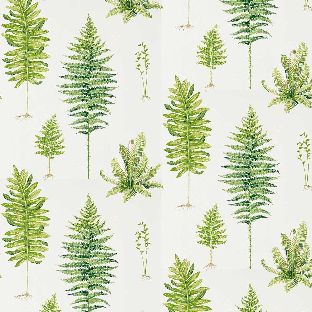 Fernery Wallpaper - Botanical Green - by Sanderson