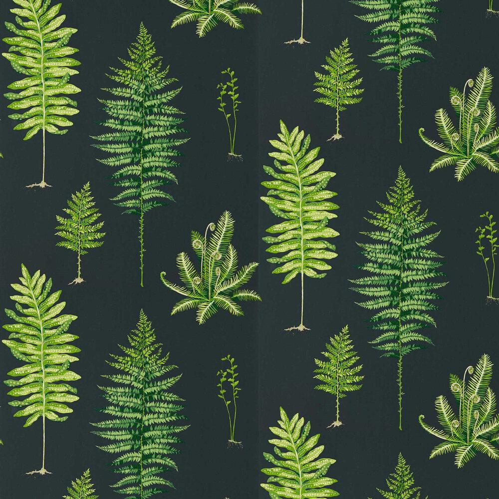 Fernery Wallpaper - Botanical Green / Charcoal - by Sanderson