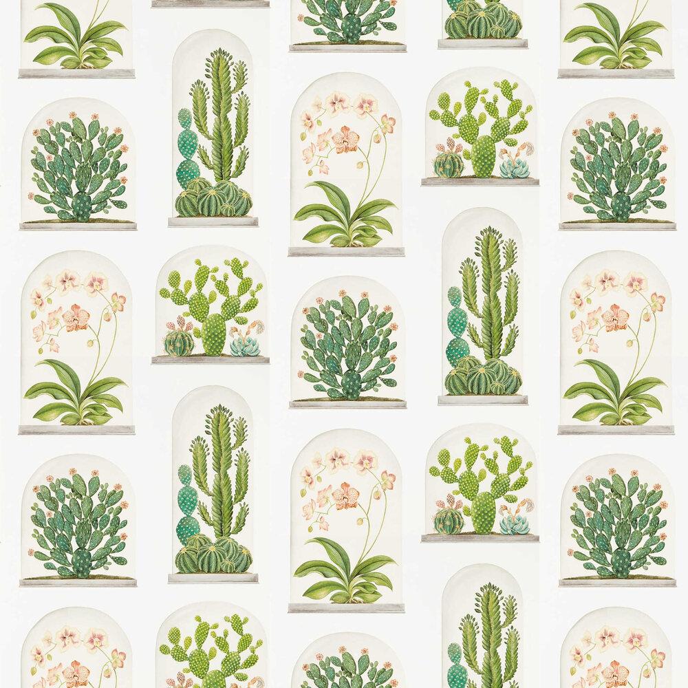 Terrariums Wallpaper - Chalk / Green - by Sanderson
