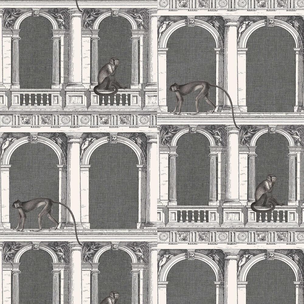 Procuratie e Scimmie Wallpaper - Black / White - by Cole & Son