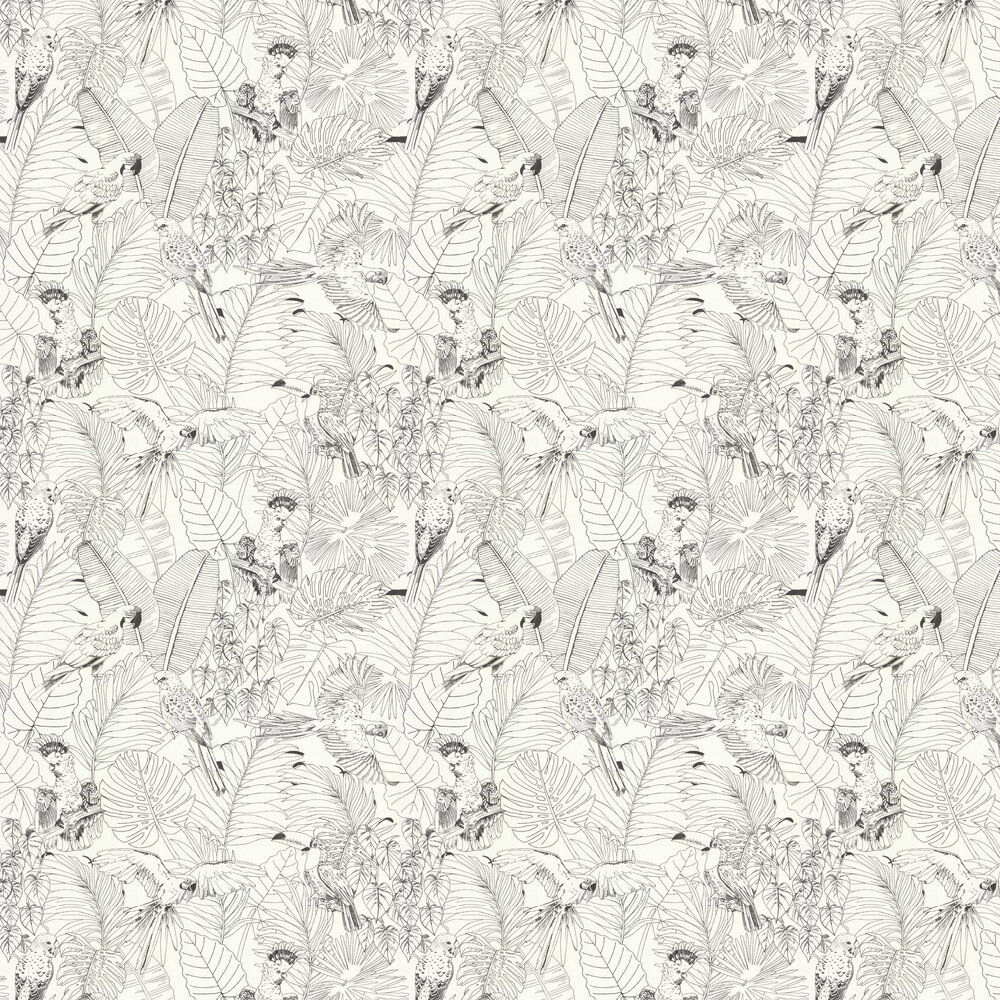 Albany Parrot Jungle Black / White Wallpaper - Product code: 447880
