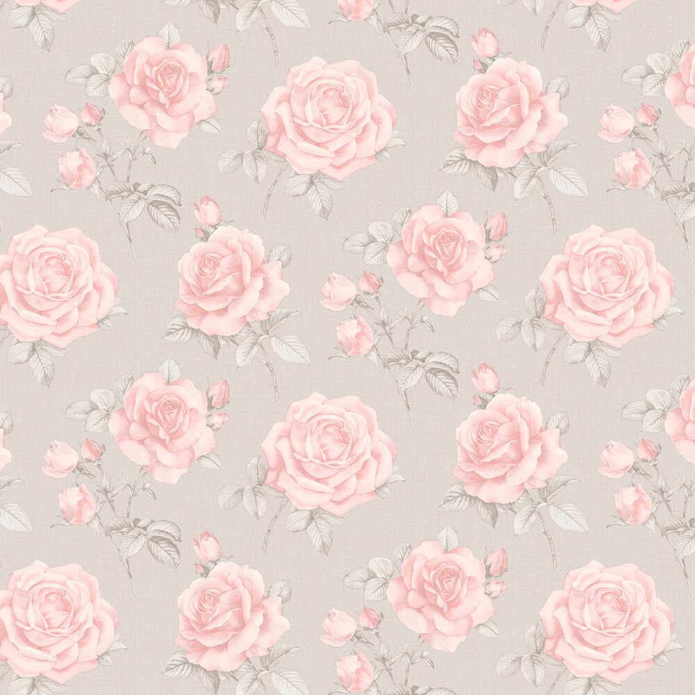 Rosa Wallpaper - Blush - by Albany