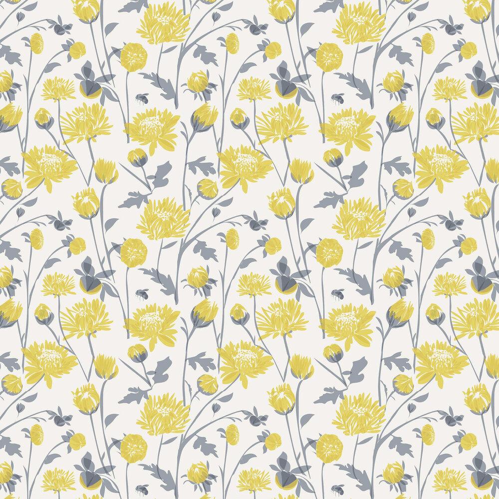 Chrysanthemum Wallpaper - Yellow - by Lorna Syson
