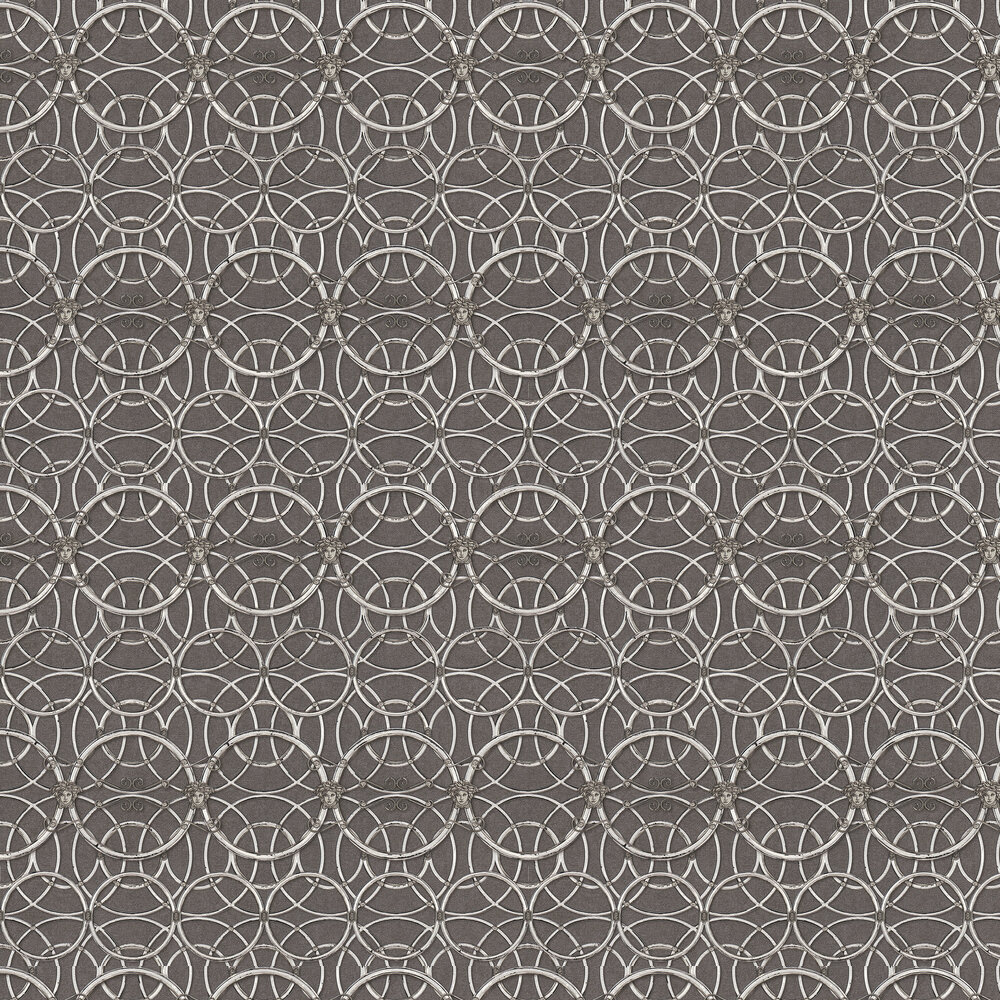 La Scala Del Palazzo Wallpaper - Charcoal and Silver - by Versace