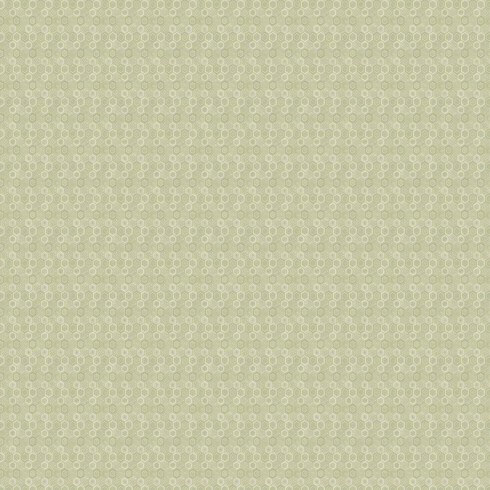 Hexagon Wallpaper - Green Cream - by Brewers