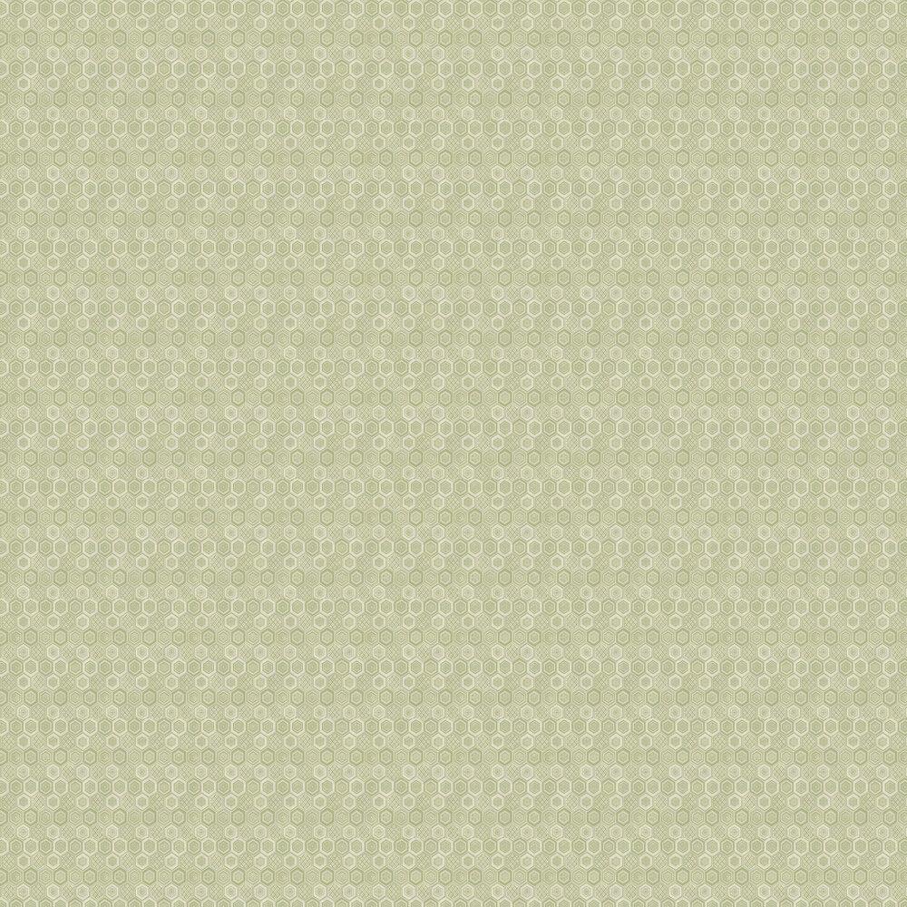 Brewers Hexagon Green Cream Wallpaper - Product code: 23733