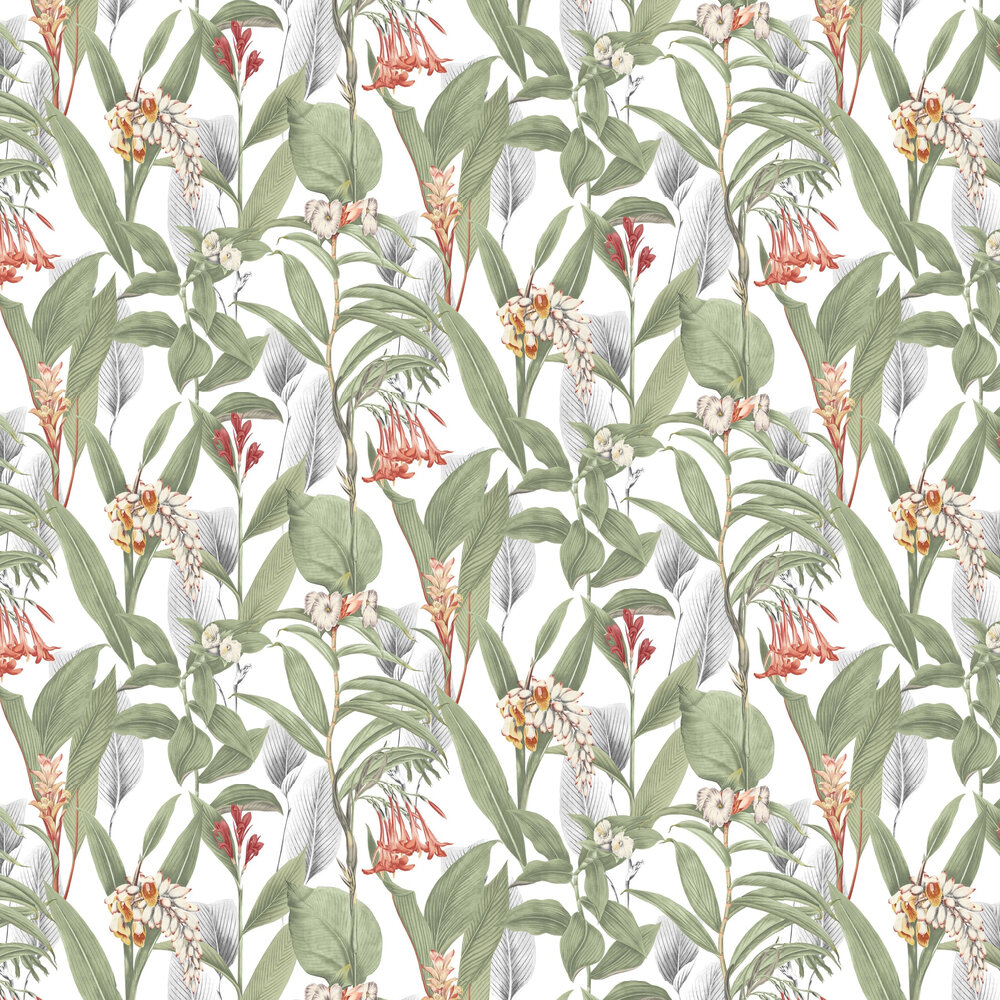 Graham & Brown Botanical Powder Wallpaper - Product code: 103797