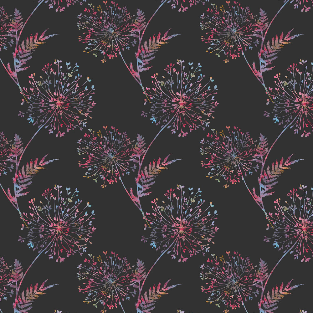 Graham & Brown Wish Black / Multicoloured Wallpaper - Product code: 106433