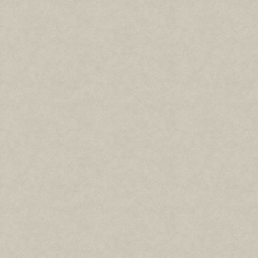 Aphrodite Plain Wallpaper - Taupe - by Fardis