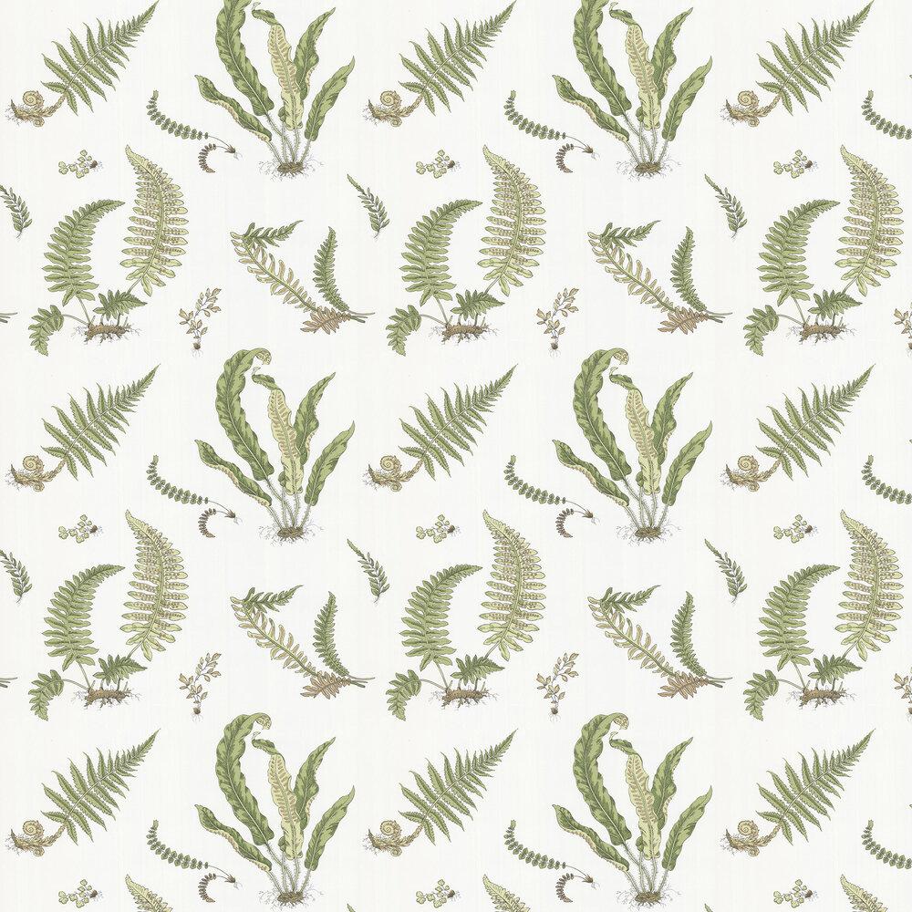 Ferns Wallpaper - Leaf - by G P & J Baker