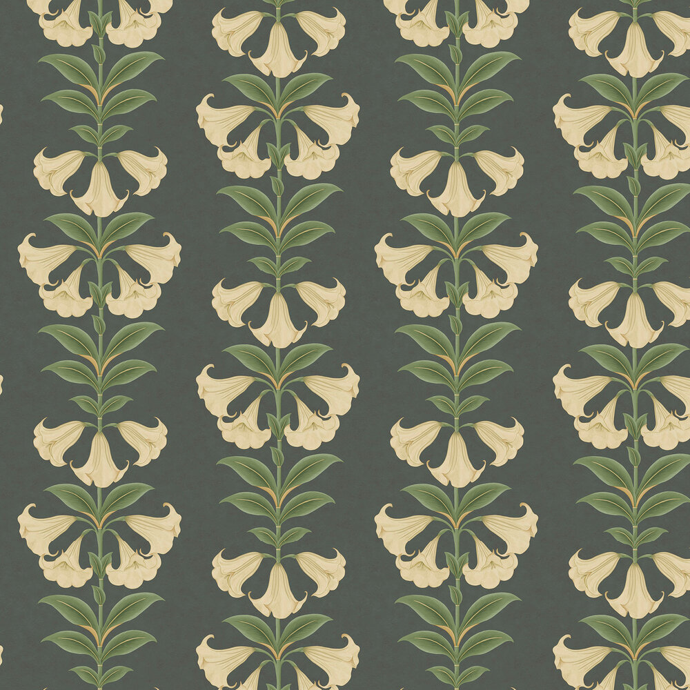 Angel's Trumpet Wallpaper - Cream & Olive Green on Charcoal - by Cole & Son
