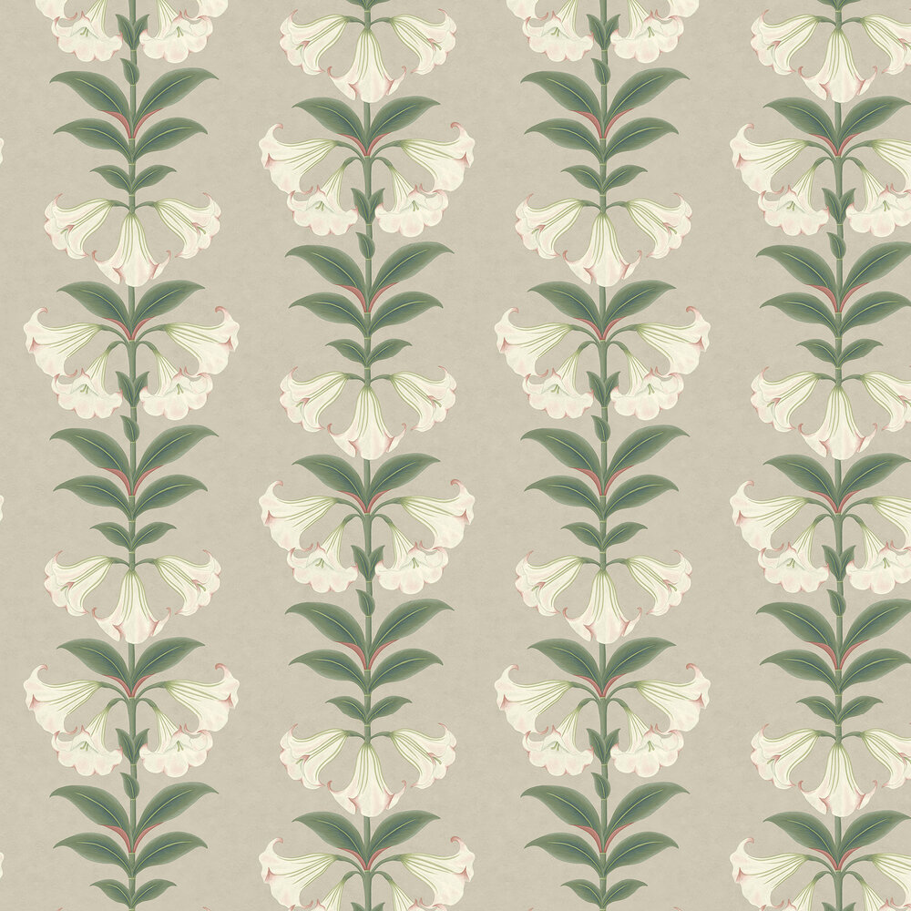 Angel's Trumpet Wallpaper - Chalk & Sage on Stone - by Cole & Son