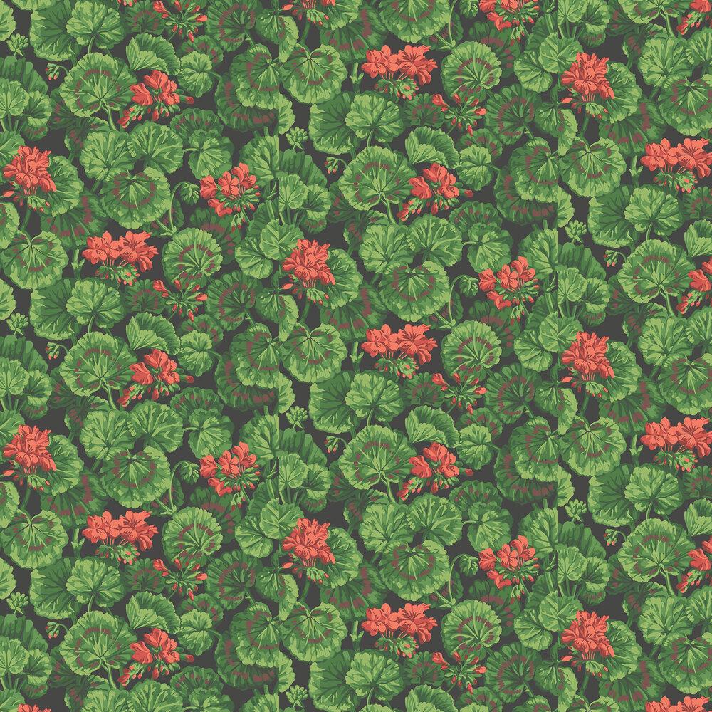 Geranium Wallpaper - Rouge & Leaf Greens on Black - by Cole & Son