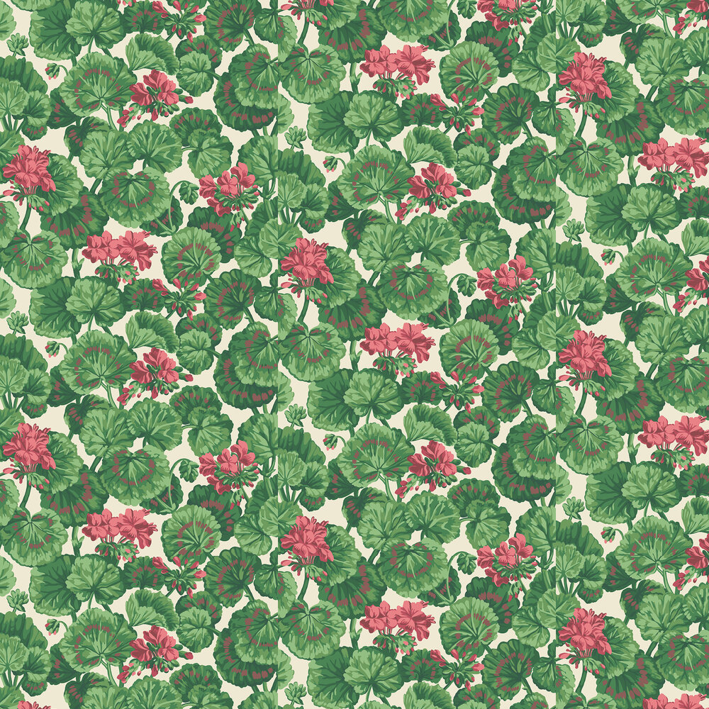 Geranium Wallpaper - Rose & Forest Greens on Parchment - by Cole & Son
