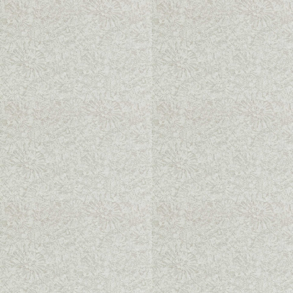 Ammonite Wallpaper - Pumice - by Anthology