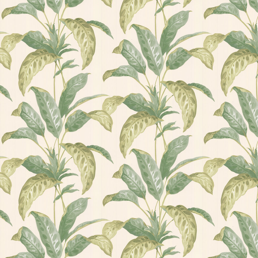 Tropicane Wallpaper - Chelsea Garden II - by Paint & Paper Library