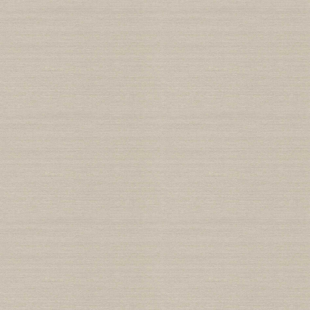 Paxton Wallpaper - Grey - by Etro