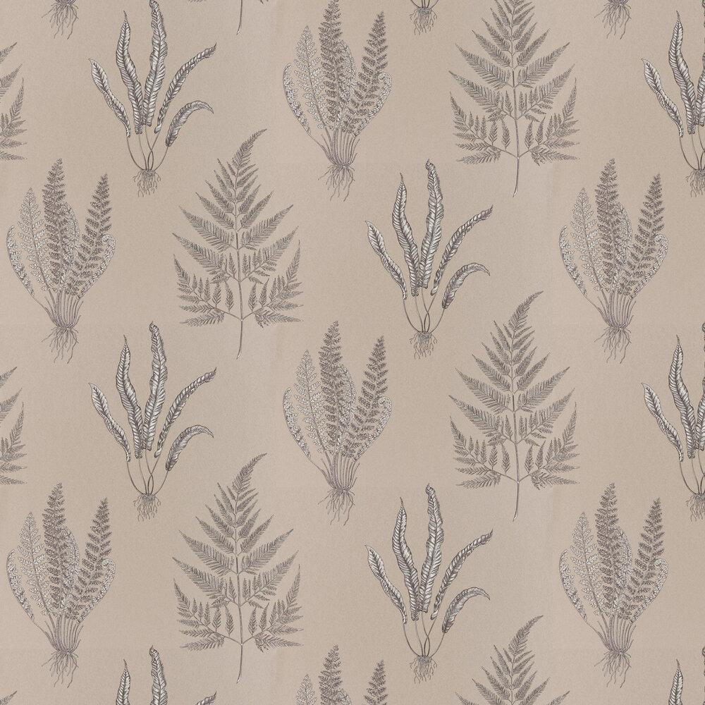 Woodland Ferns Wallpaper - Plaster - by Sanderson
