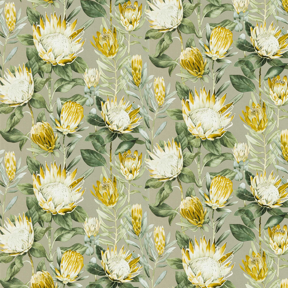 King Protea Wallpaper - Pearl / Woodland yellow - by Sanderson