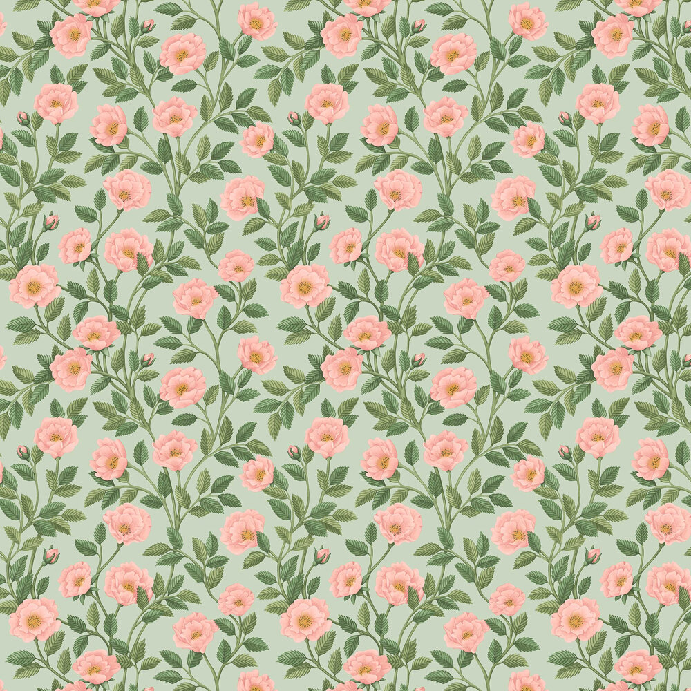 Hampton Roses Wallpaper - Rose / Leaf Green - by Cole & Son