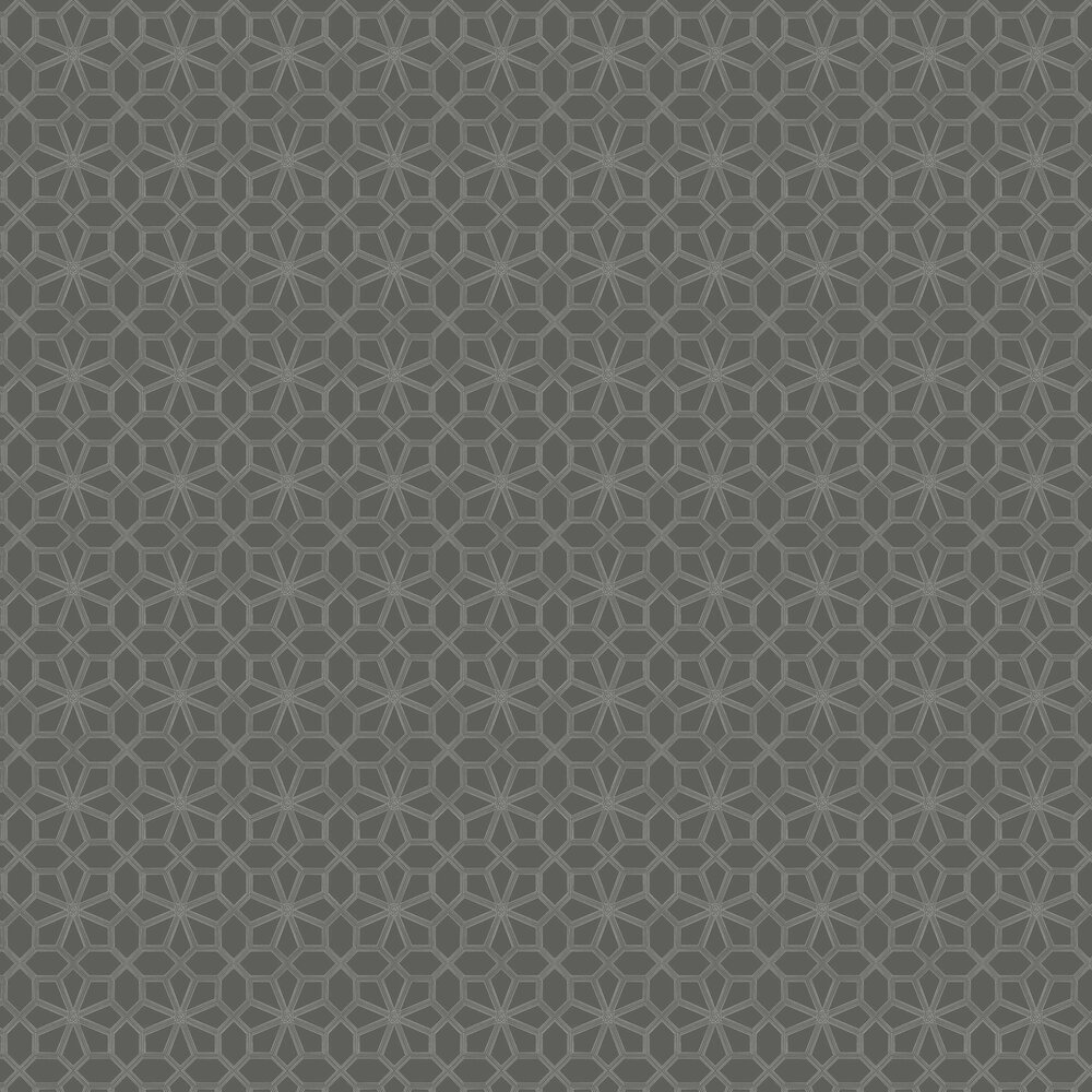 Wolsey Stars Wallpaper - Chalk / Charcoal - by Cole & Son