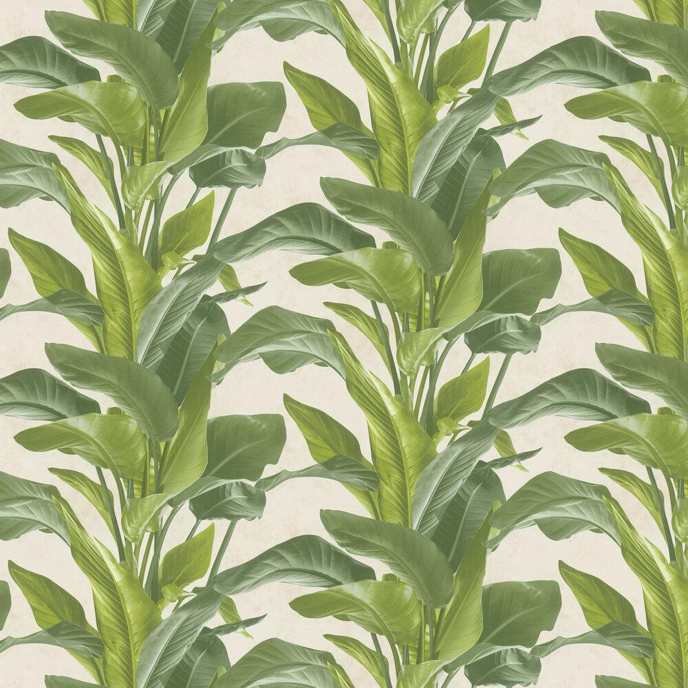 Bold Leaves Wallpaper - Green - by Metropolitan Stories