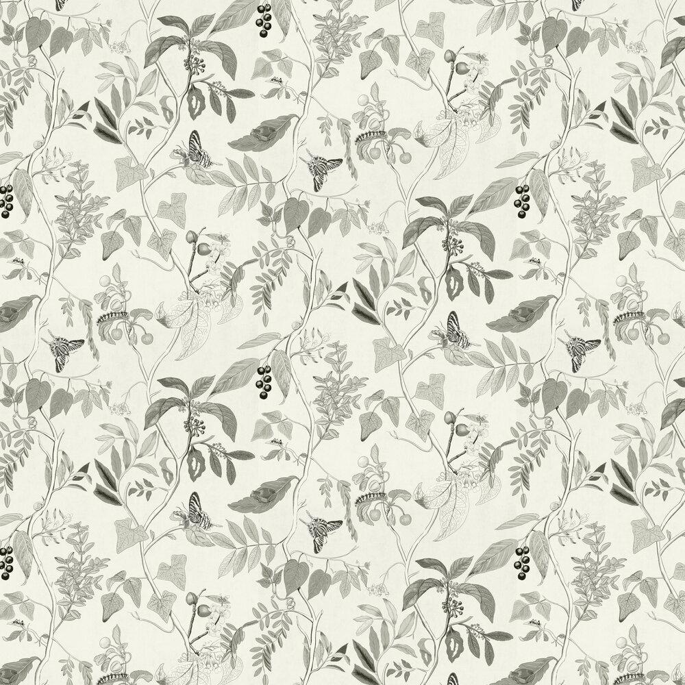 Diderot Wallpaper - Sketch - by Coordonne