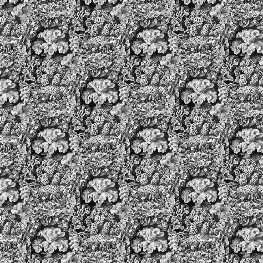 Aquila Wallpaper - Cloud - by Rebel Walls