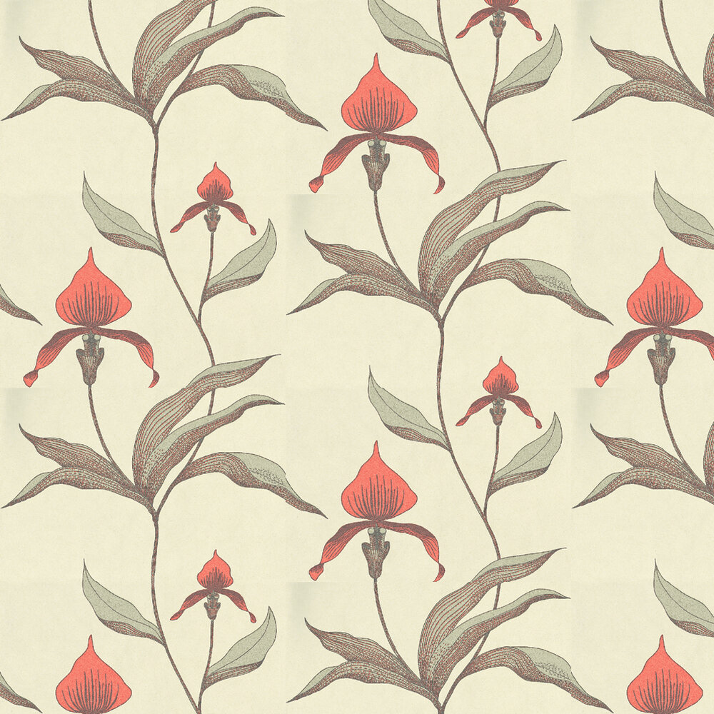Cole & Son Orchid Brown / Coral / Cream Wallpaper - Product code: 66/4033