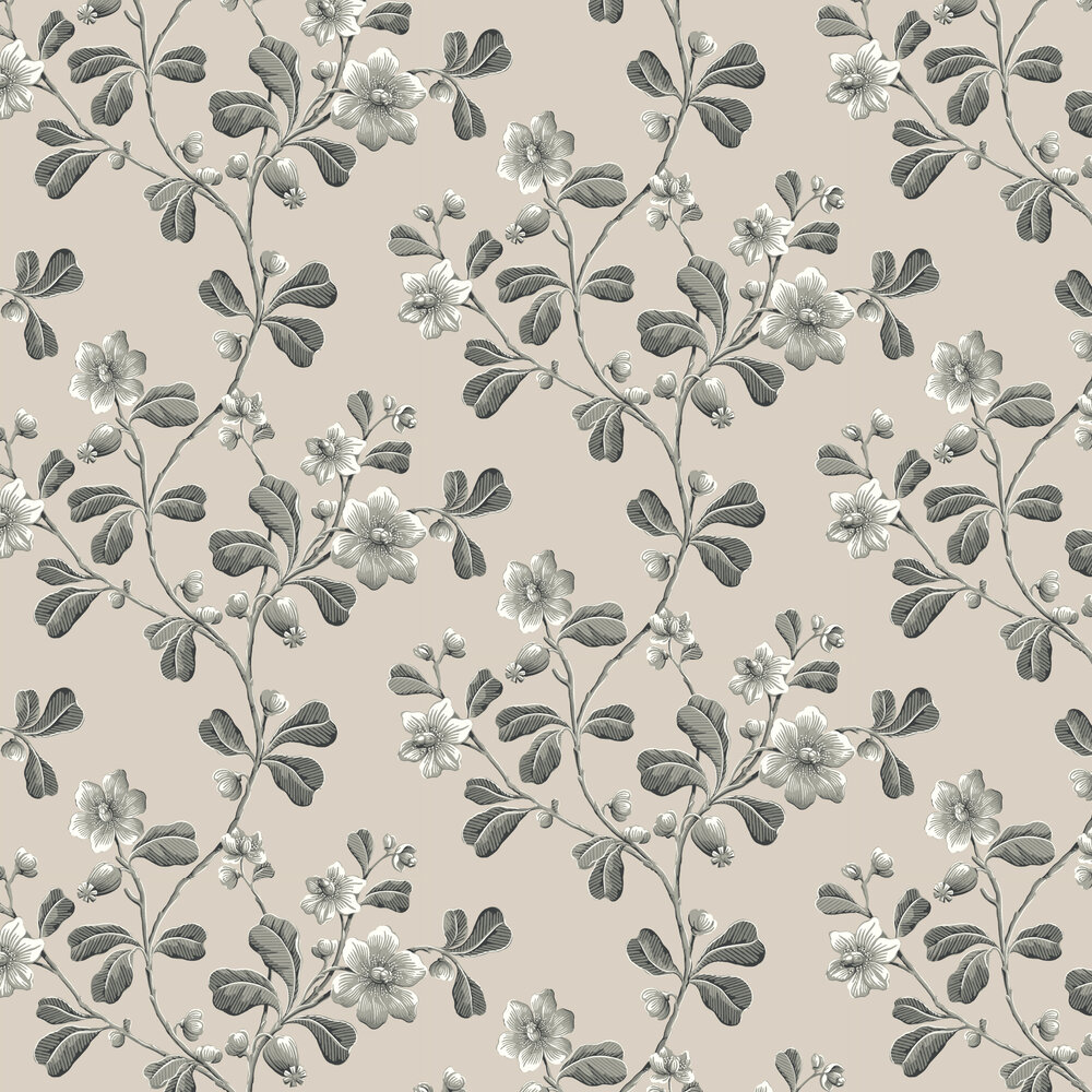 Little Greene Broadwick St Black Wallpaper - Product code: 0251BRMONOZ