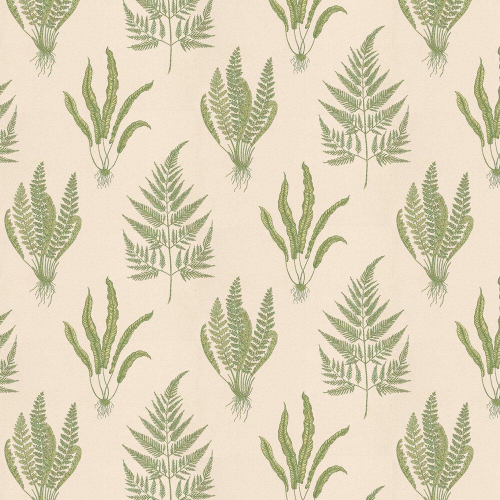 Sanderson Woodland Fern Green / Stone Wallpaper - Product code: DAPGWO102