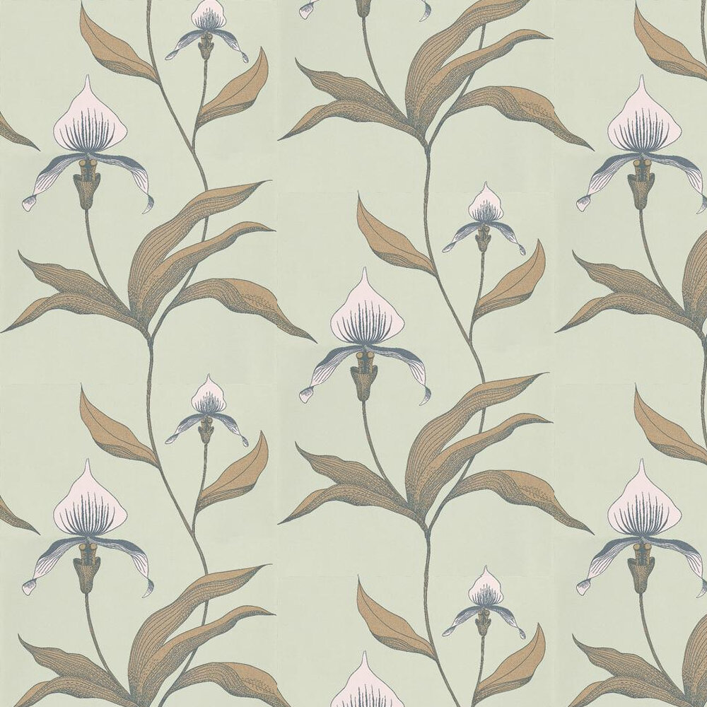Orchid Wallpaper - Green - by Cole & Son