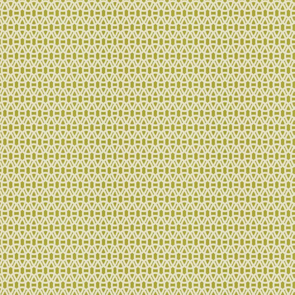 Lace By Scion Lime Wallpaper 110228