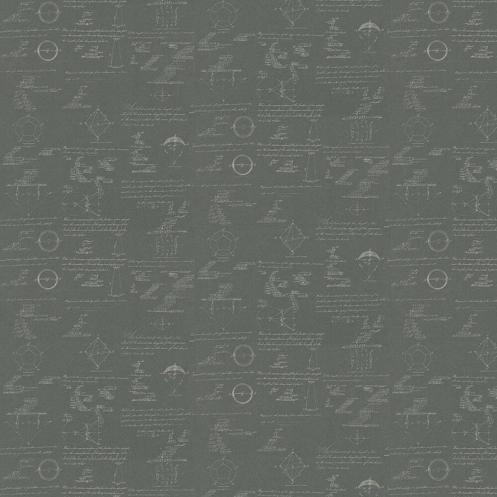 Pythagoras Wallpaper - Charcoal - by Andrew Martin