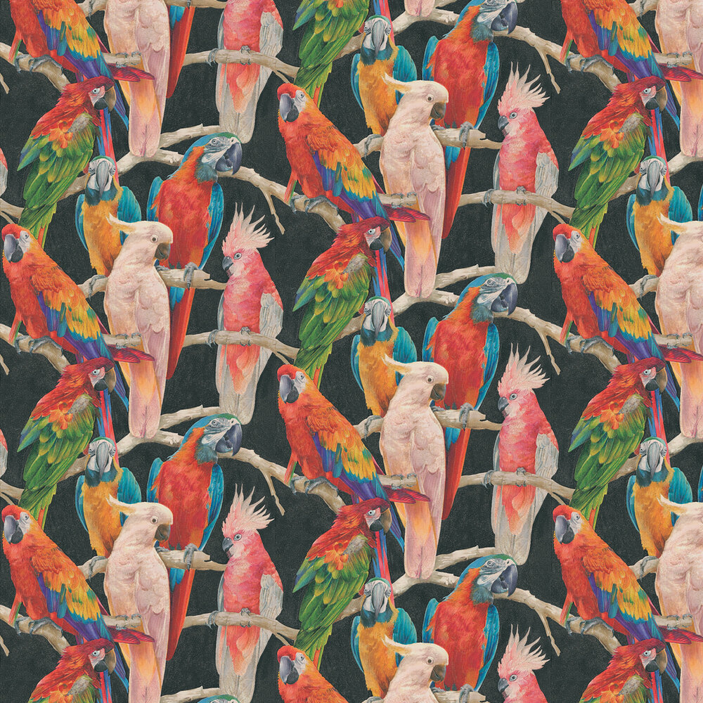 Albany Parrots Multi Wallpaper - Product code: 823608