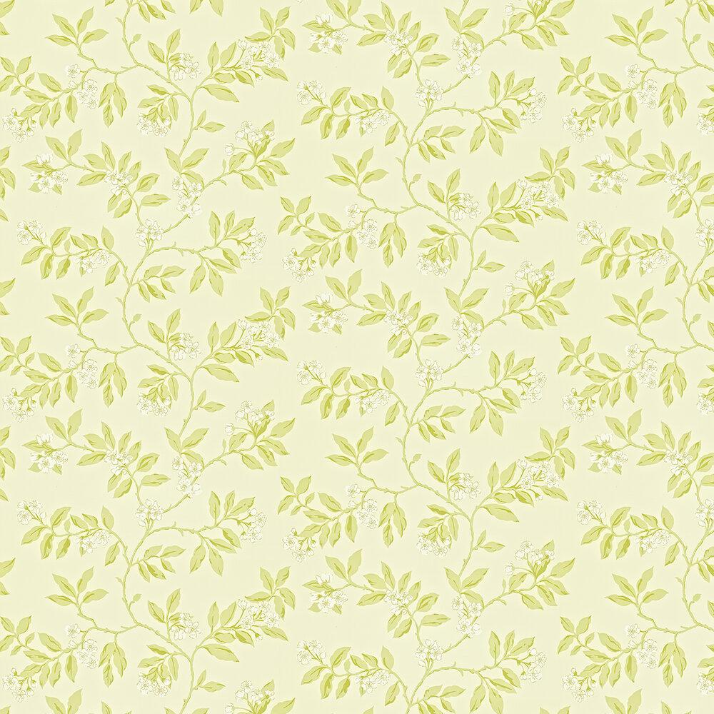 Sanderson Blossom Bough Cream / Green Wallpaper - Product code: 211992