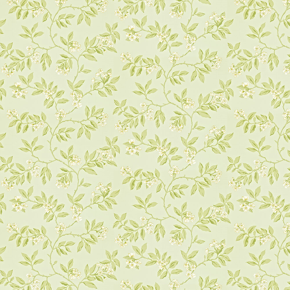Sanderson Blossom Bough Duck Egg / Green Wallpaper - Product code: 211993